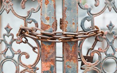 Gated Content – Leadmagnet im Marketing