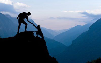 Warum sind Trust und Autorität so wichtig?